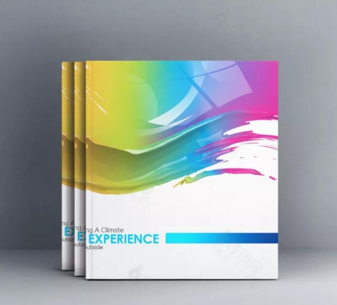 广州墙面漆画册设计,广州墙面漆画册设计公司
