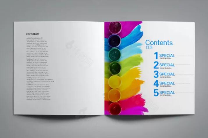广州墙面漆行业画册设计图