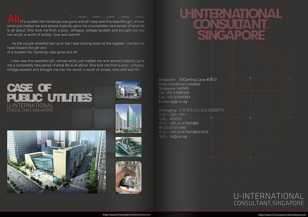 新加坡建筑行业画册设计案例