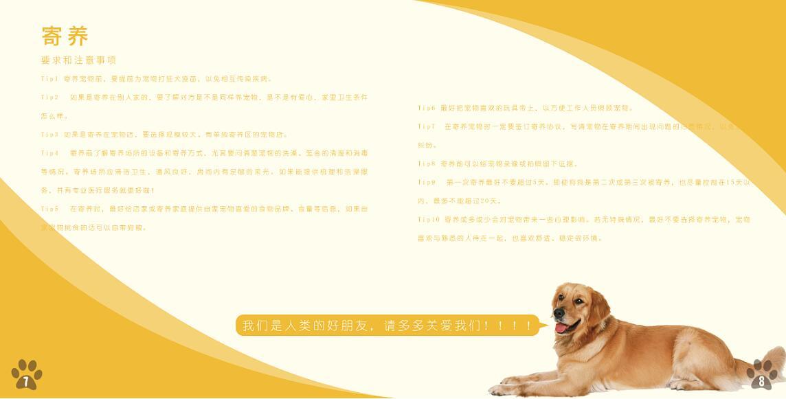 宠物行业画册设计案例欣赏