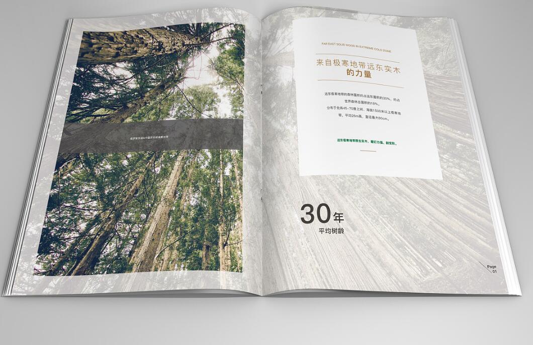 绿色环保地板行业画册设计案例欣赏