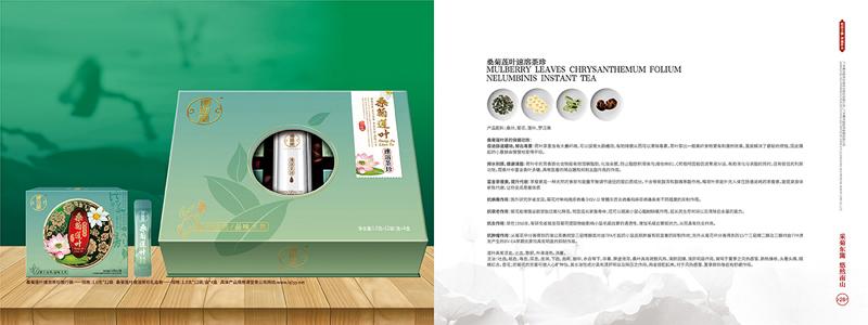 企业集团公司宣传画册设计案例欣赏27-28.jpg