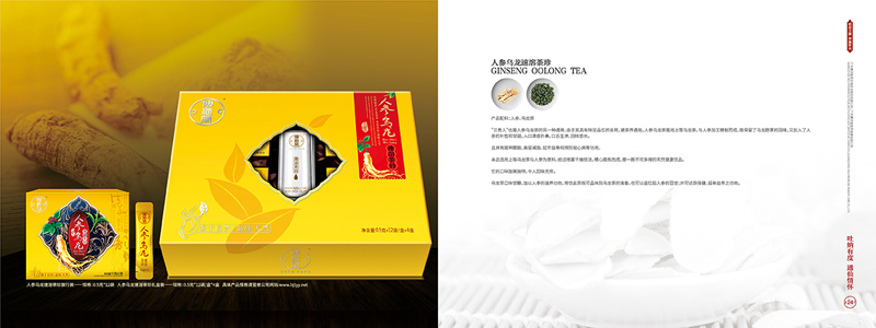 企业集团公司宣传画册设计案例欣赏23-24.jpg