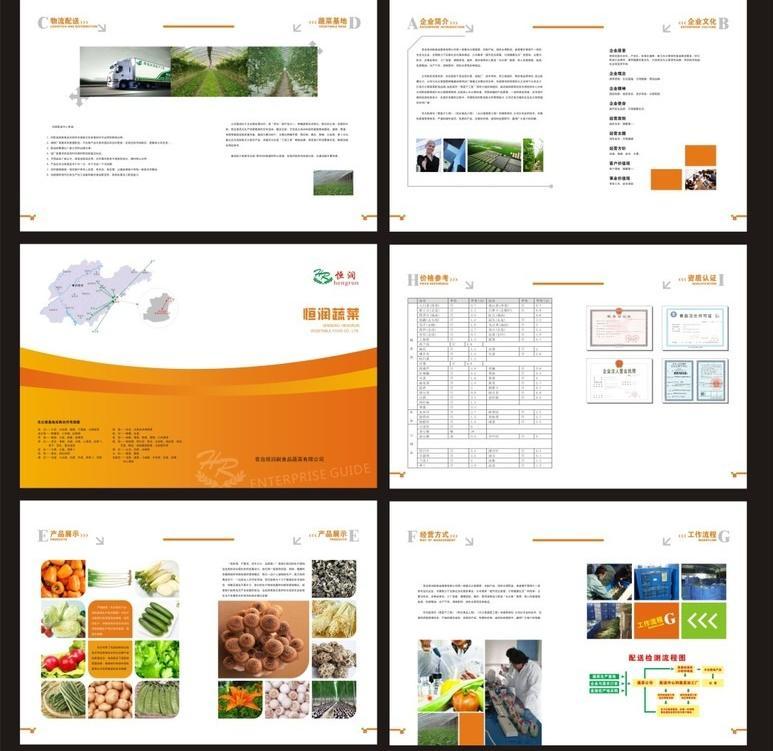公司广告画册设计公司