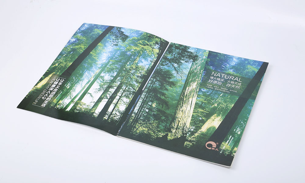 天然食品公司画册