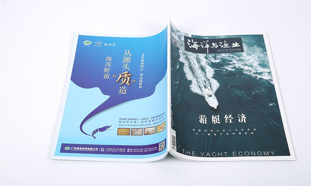 投资企业画册设计