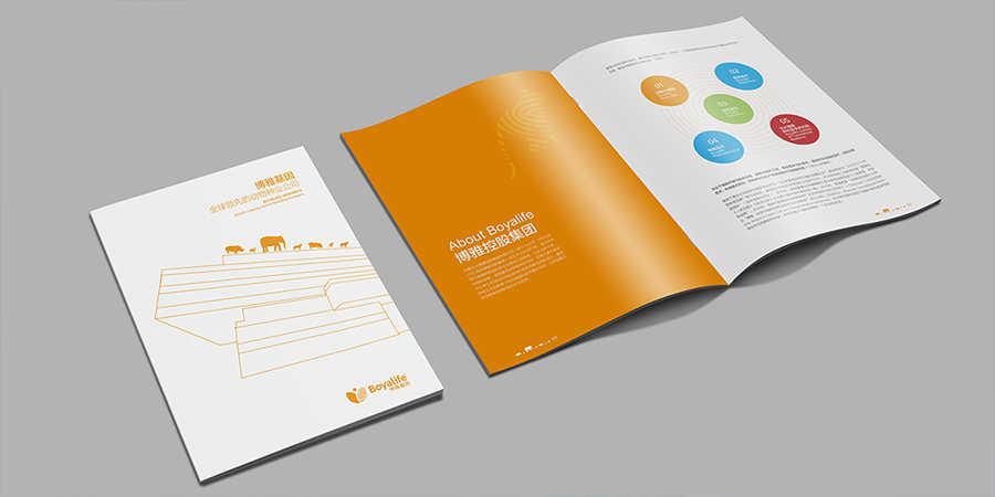公司广告画册设计