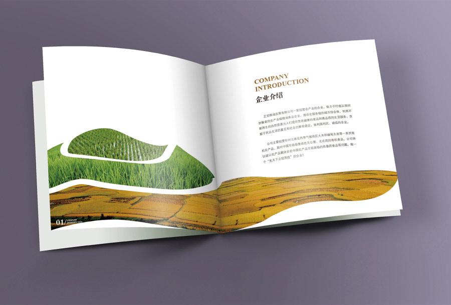 影视公司画册设计